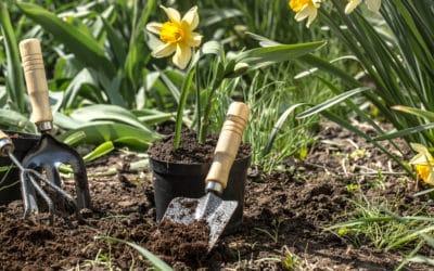 Préparer son jardin à l'arrivée du printemps