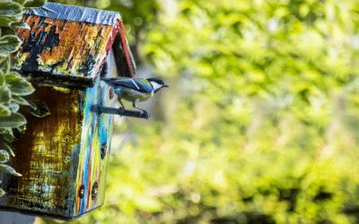 Installer un nichoir à oiseaux